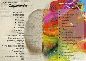 Los dos emisferios.