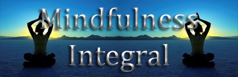 mindfullness integral